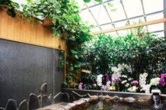 湯の華が浮遊するボタニカル系の温室温泉「花の湯」でほっこりしてきた