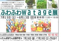 7月 たんぽぽりんの予定とふわふわwatage展